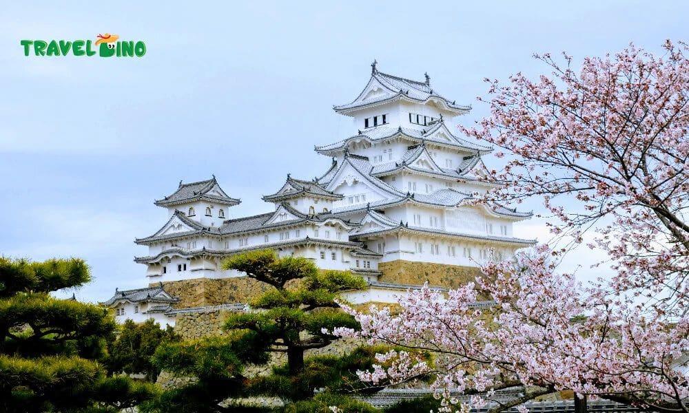traveldino japan